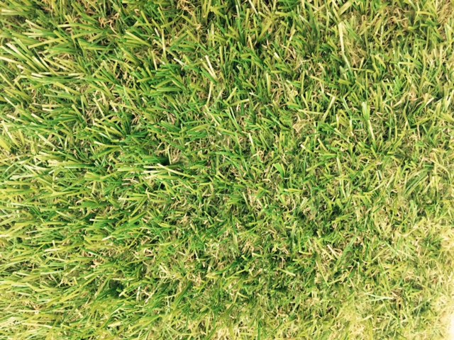 Buy Artificial Grass in Basingstoke